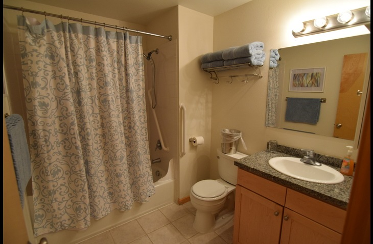 Bathroom with Tub Shower