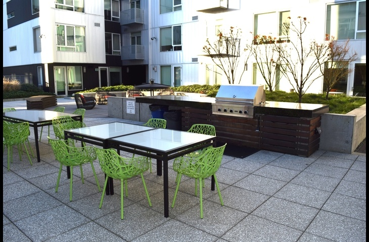 Spacious Outdoor Terrace
